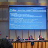 Mountain View City Council